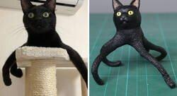 Enlace a Este artista japonés transforma curiosos momentos de animales en esculturas