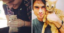 Enlace a Celebridades que son conocidas por su amor a los gatos