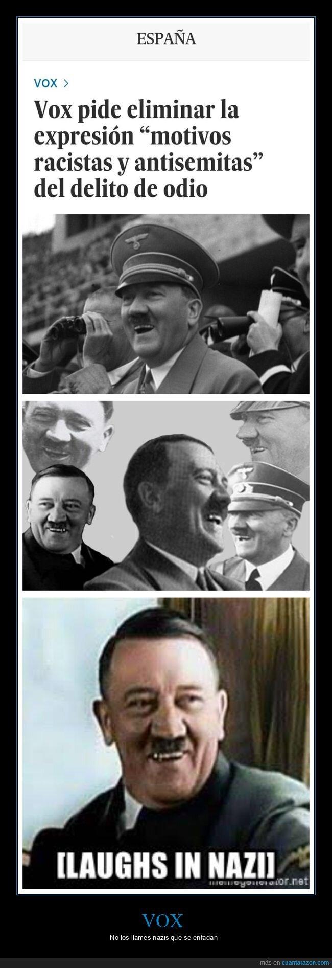 antisemitismo,delitos de odio,políticos,racismo,vox