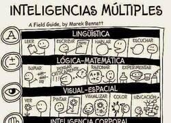 Enlace a Los distintos tipos de inteligencia