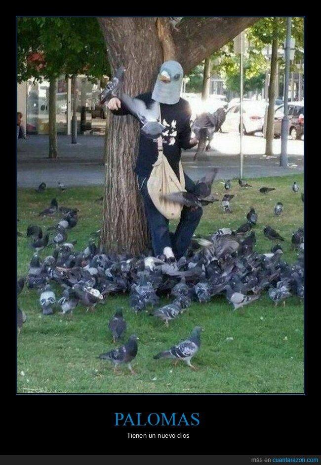 disfraz,palomas