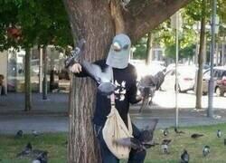 Enlace a El señor de las palomas
