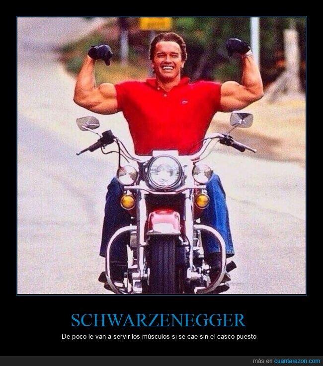 moto,músculos,schwarzenegger