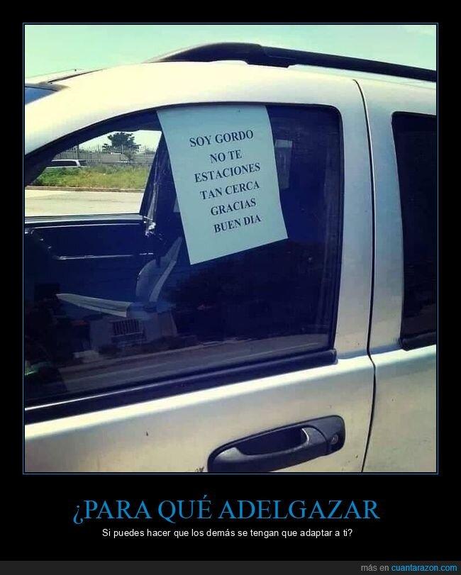 aparcar,carteles,cerca,coches,gordo