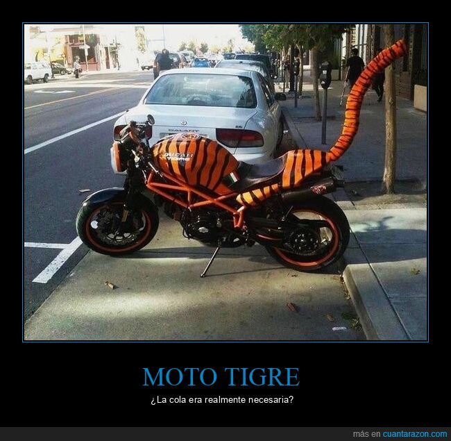 cola,moto,tigre