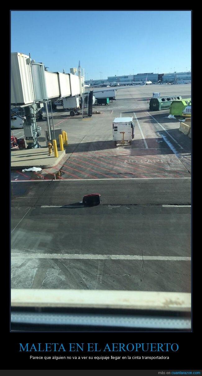 aeropuerto,fails,maleta