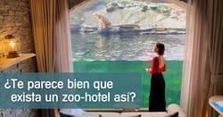Enlace a El «mejor zoo» de Europa tiene suites en las que pasar la noche rodeados por animales salvajes