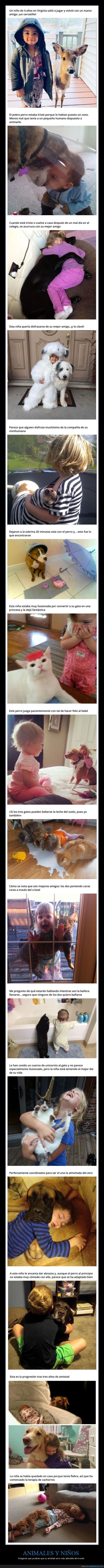 amistad,animales,niños