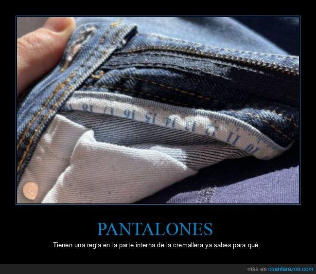 cremallera,pantalones,regla,wtf
