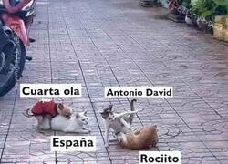 Enlace a Mientras tanto, en España...