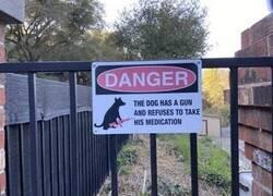 Enlace a Perro peligroso
