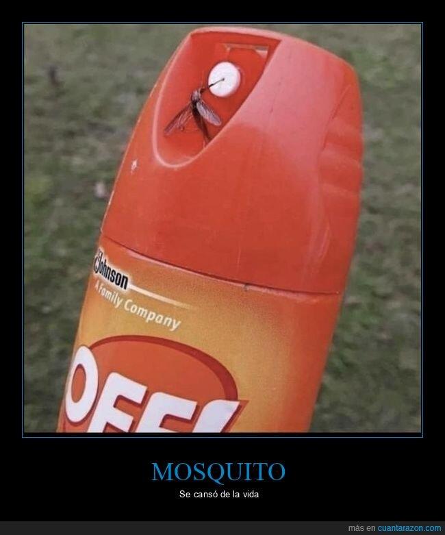 insecticida,mosquito,wtf