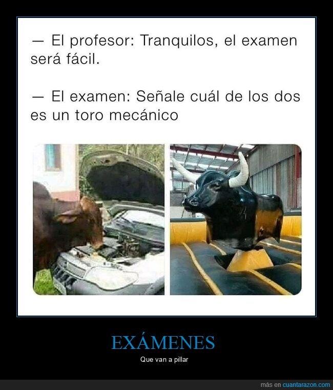 examen,toro mecánico