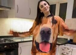 Enlace a Fan de su perro