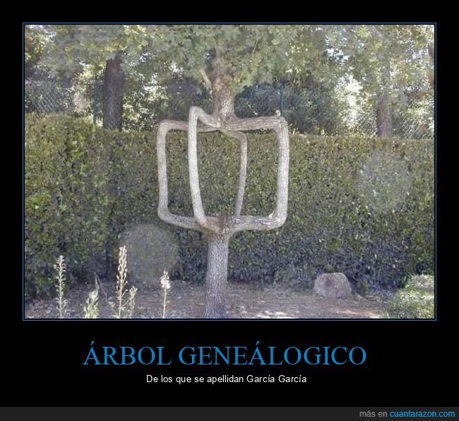 arbol genealogico,cruzado,gonzalez