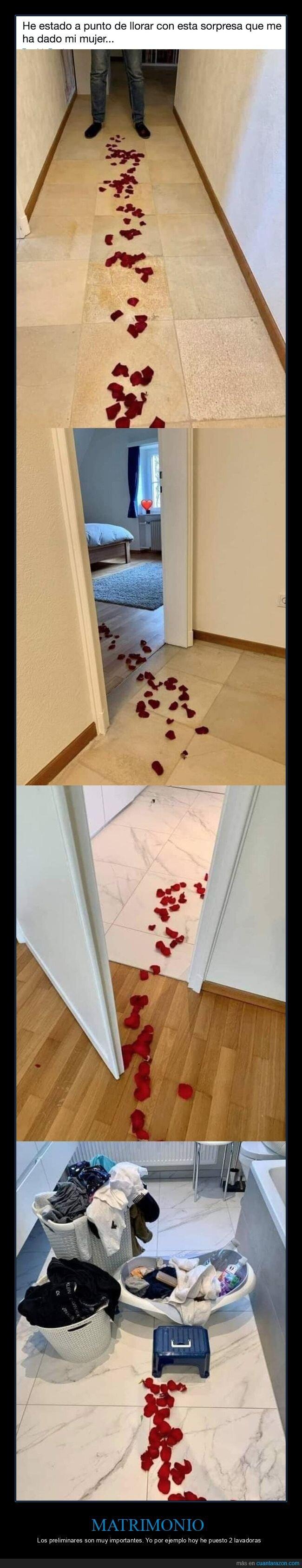 calzonazos,mujer,pétalos,rosas