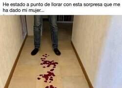 Enlace a Su mujer le prepara un camino de pétalos de rosa pero la sorpresa final no se la esperaba