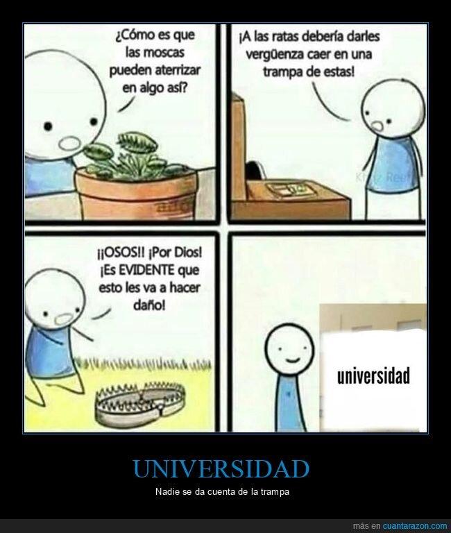 trampa,universidad