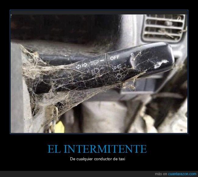 intermitente,taxi,telarañas