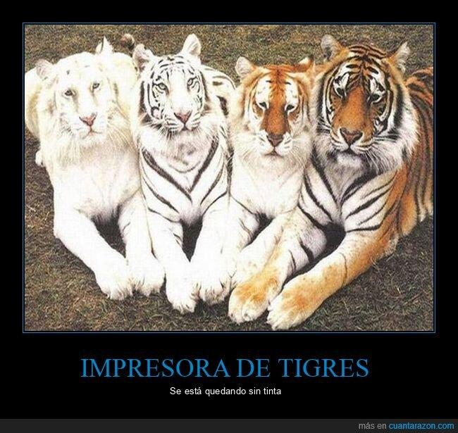 impresora.color,tigres