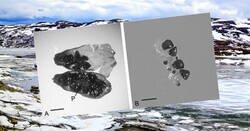 Enlace a Reviven una semilla de 32.000 años de antigüedad que estaba congelada en el permafrost