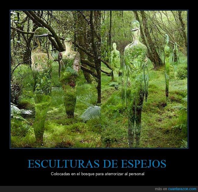 bosque,esculturas,espejos