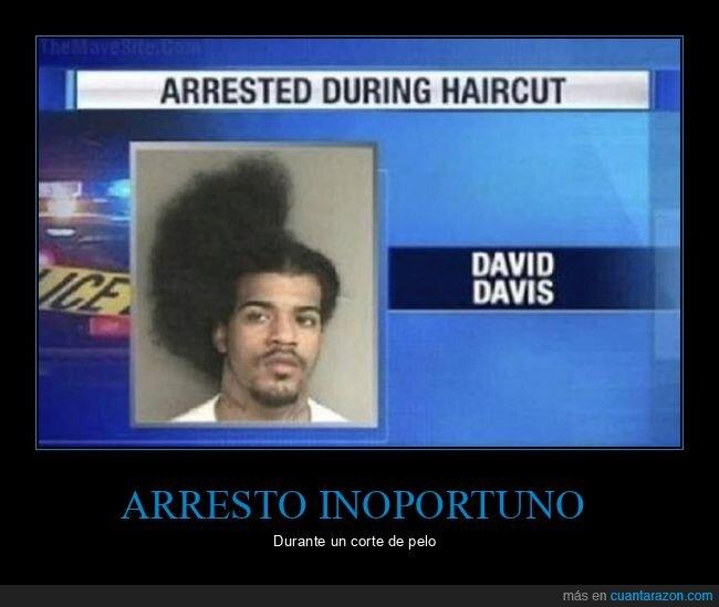 arresto,corte de pelo,fails