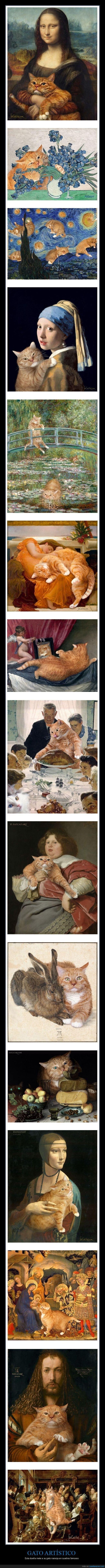 arte,cuadros,gato
