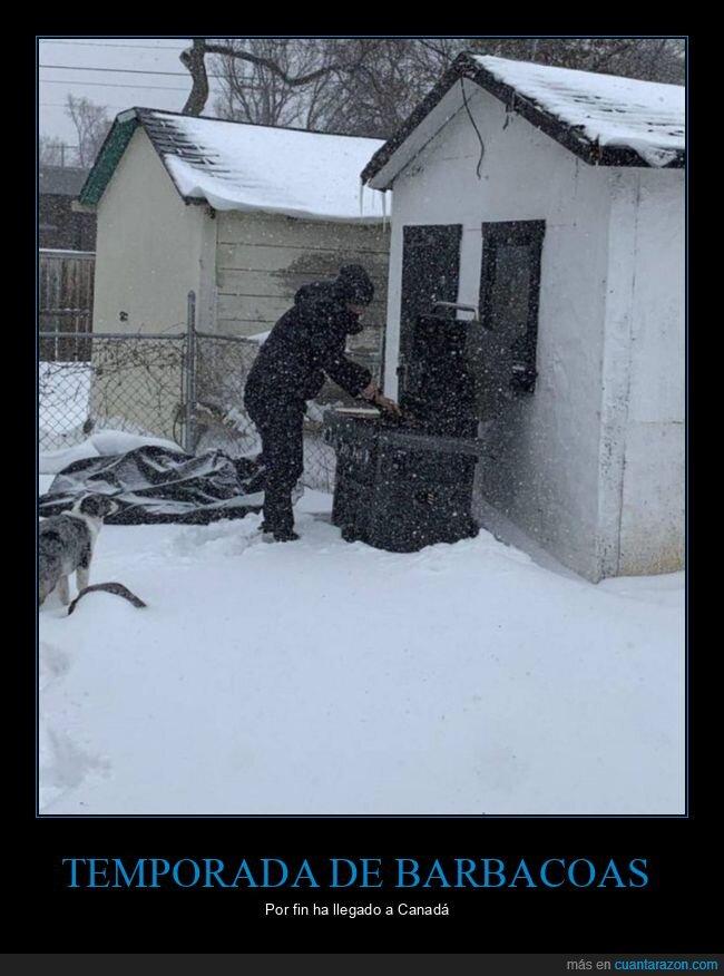 barbacoa,canadá,nieve