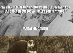Enlace a Una cita de Gandhi