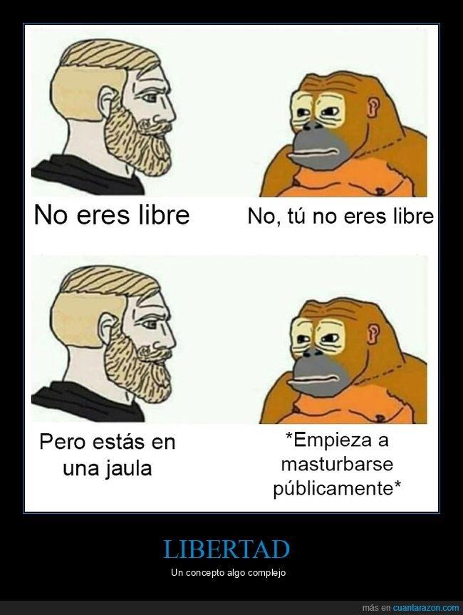 libre,mono