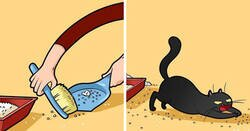 Enlace a Esta artista ilustra los divertidos momentos de la vida de todo dueño de gatos