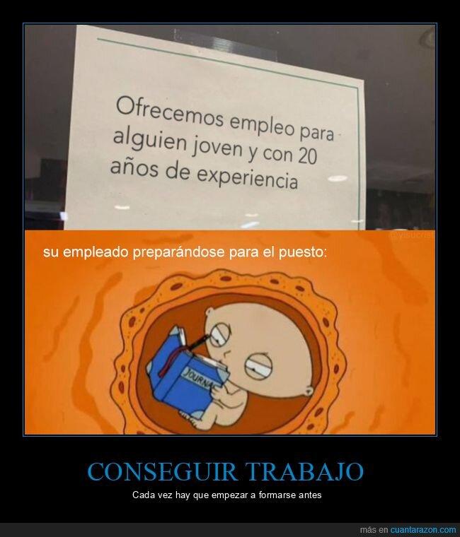 experiencia,oferta de empleo,wtf