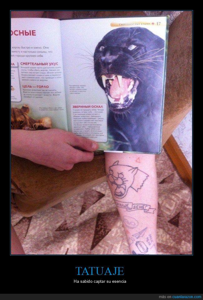 fails,pantera,tatuaje
