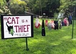 Enlace a Recuperando objetos robados por el ladrón felino