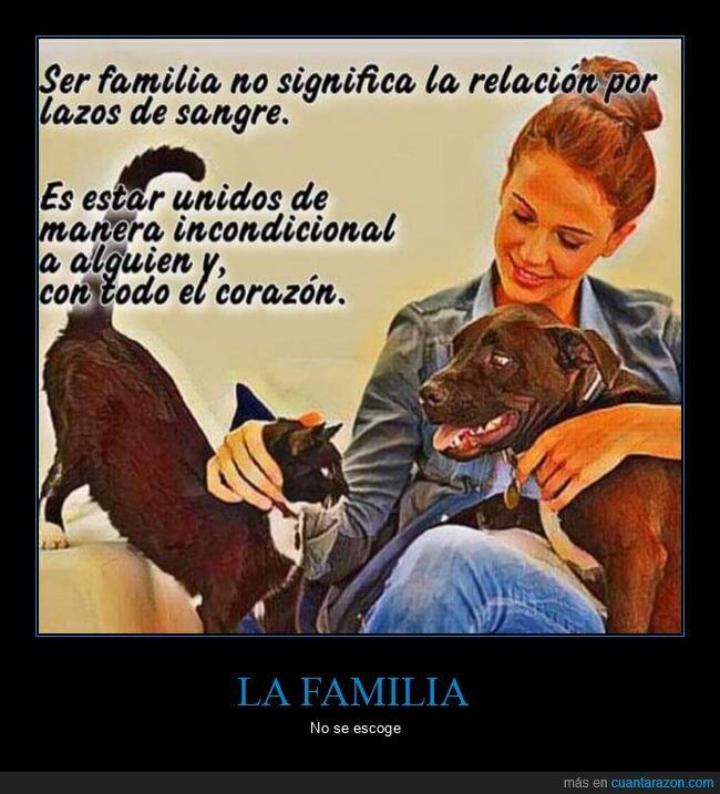 familia,lazos