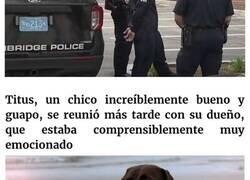 Enlace a Esta reportera informaba sobre un cachorro robado cuando lo vio en la calle, siendo paseado por quien lo robó