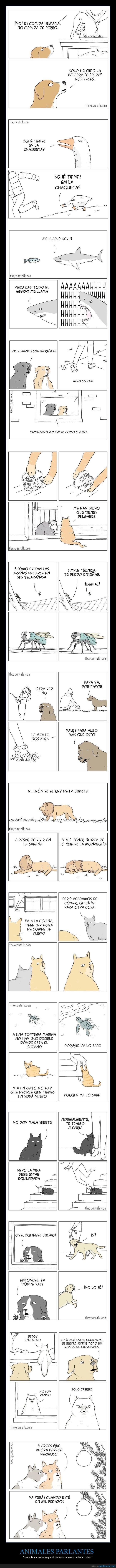 animales,cómics,hablar