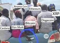 Enlace a El poder de Elon Musk