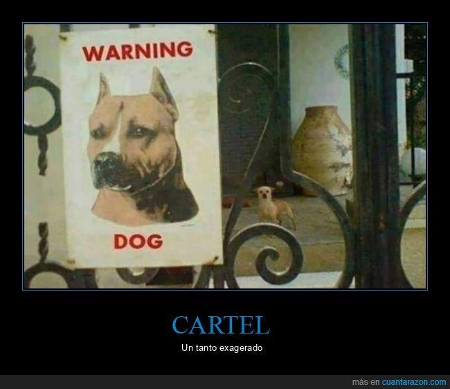 cartel,cuidado con el perro,perro