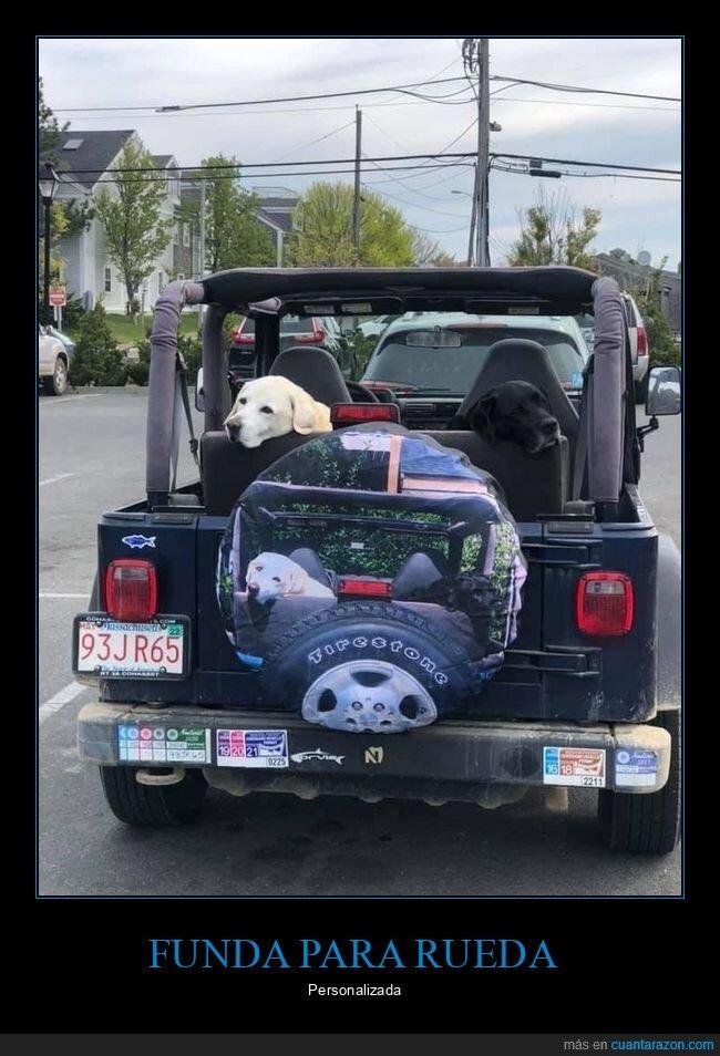 coches,funda,perro,rueda