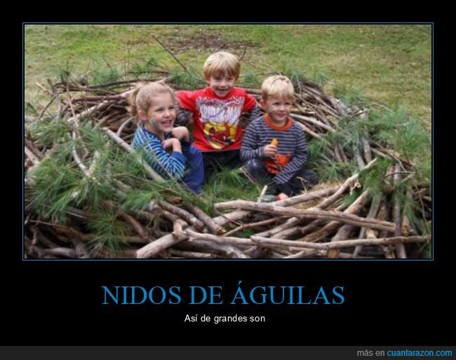 águila,nido,niños