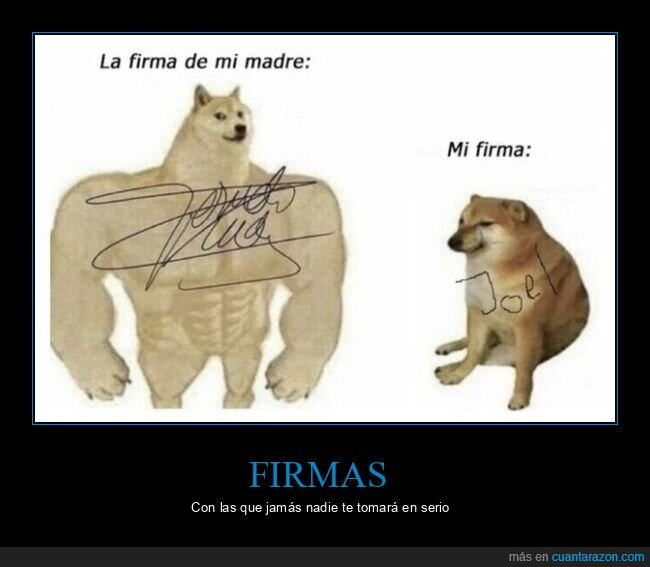 doge y cheems,firma,padres