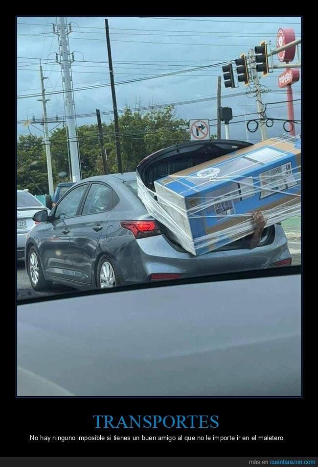 coche,maletero,transportando,wtf