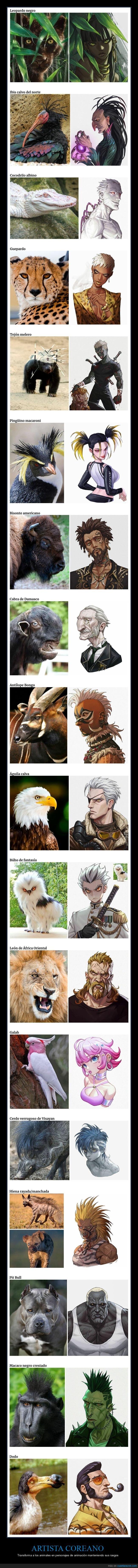 animales,anime,personajes