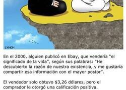 Enlace a Cosas sin sentido que la gente compró por mucho dinero en eBay