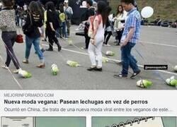 Enlace a Cosas de veganos