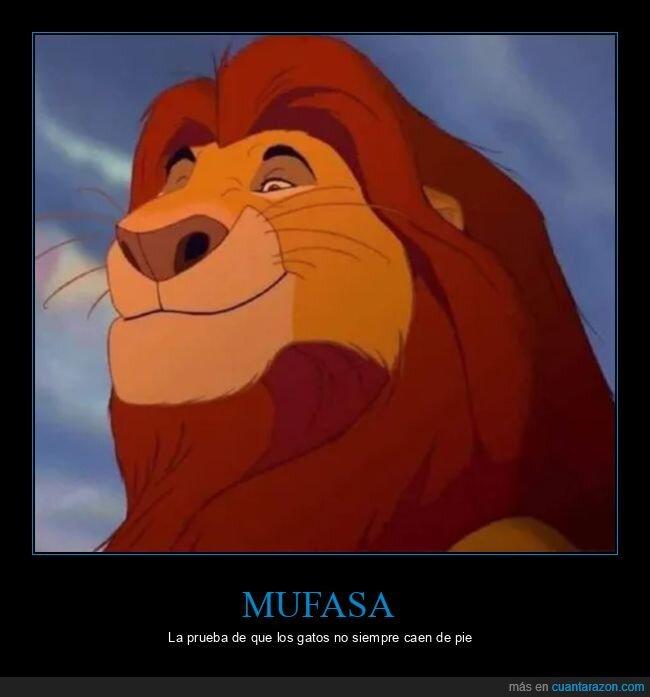 caer de pie,el rey león,mufasa