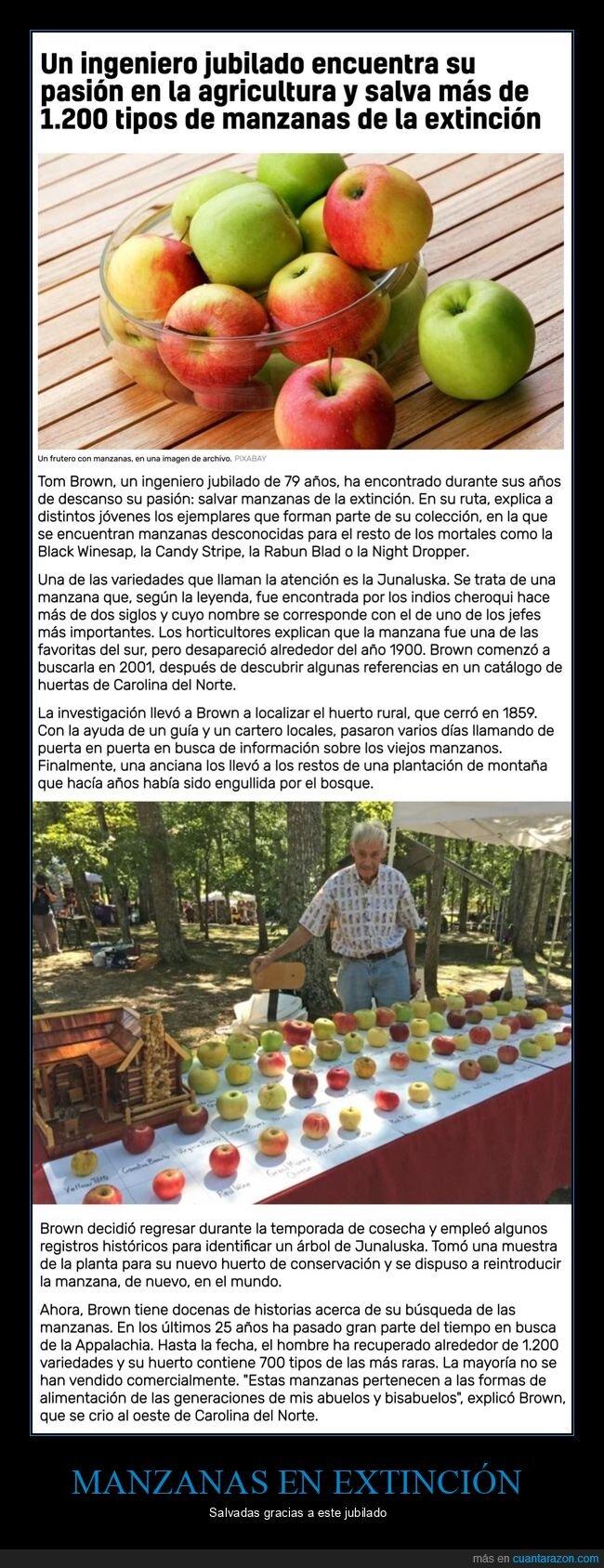 extinción,manzanas,salvadas