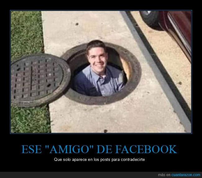 amigo,contradecir,facebook